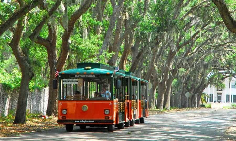 Trolly Tour