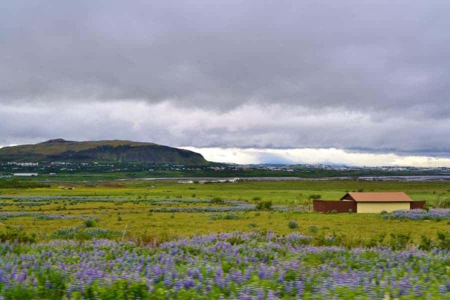 Best Time to Go to Iceland is Summer
