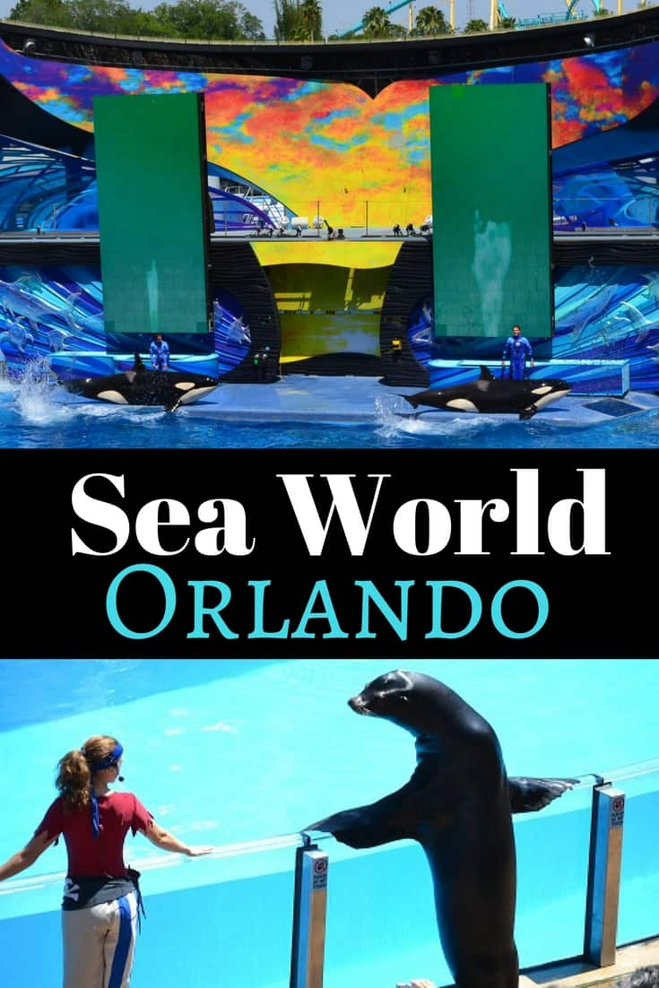 SeaWorld Orlando Rides, Attractions and Animal Experiences
