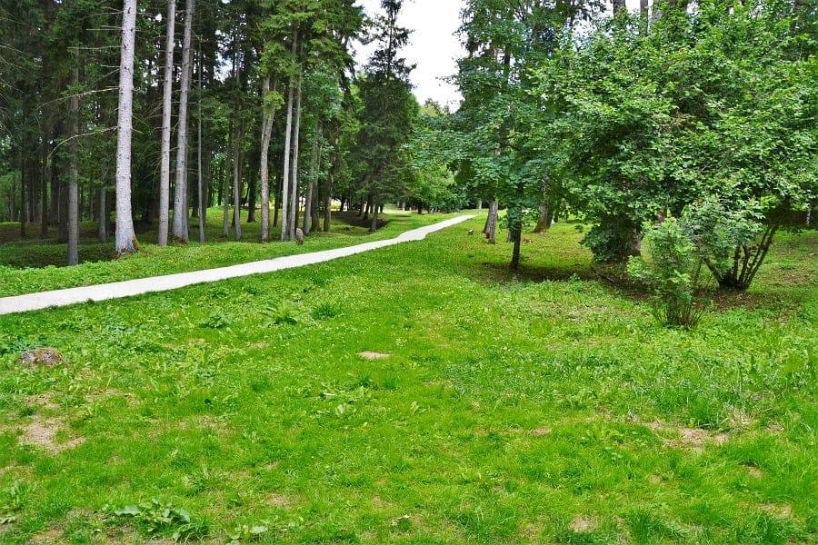 Walking trail into Fleury