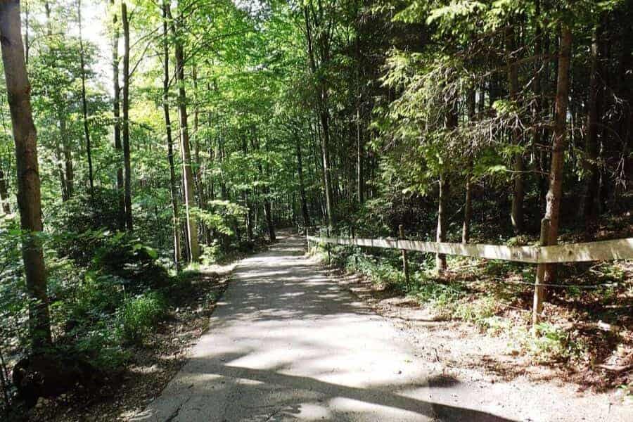 Neuschwanstein Walking Path